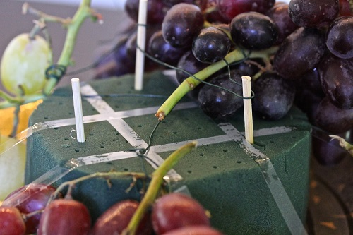 Vineyard Tales- grapes twisted around oasis