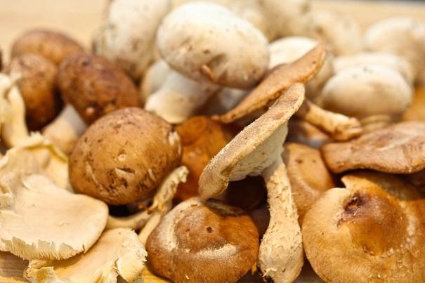 Laura Bush's Beef Tenderloin -Mushrooms