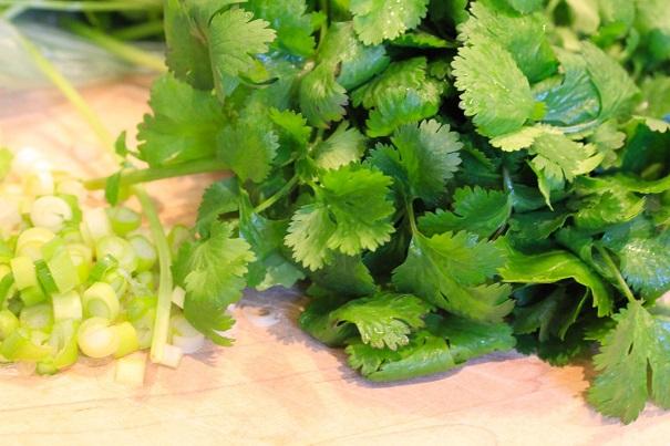 Cilantro and Celery