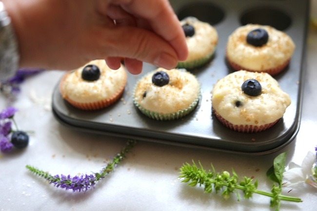 Blueberry Muffins From Jeremy Bernard